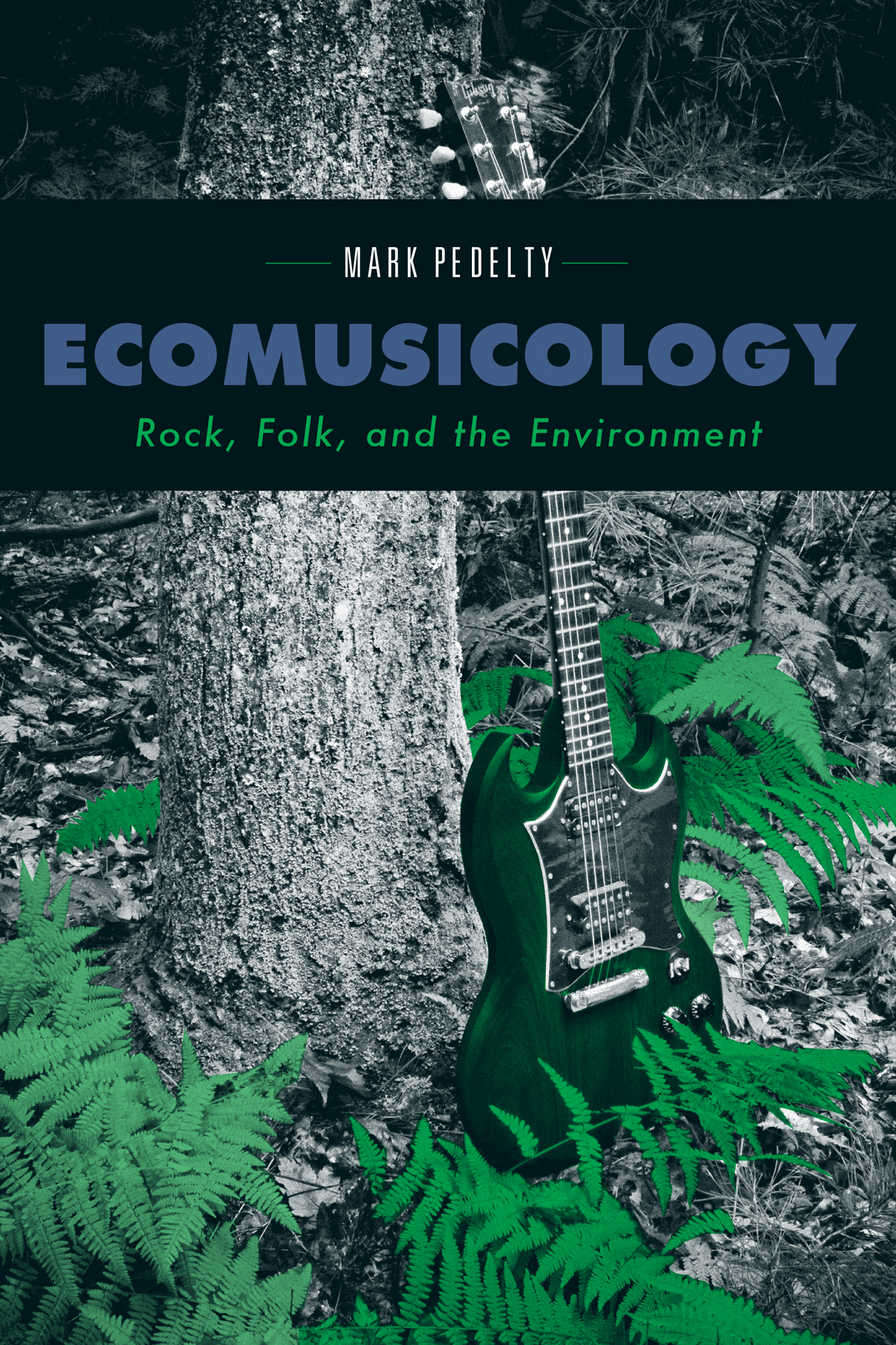 Popular Music Ecomusicology Pedelty